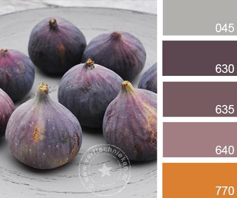 verftechnieken-kleurinspiratie-vijgen